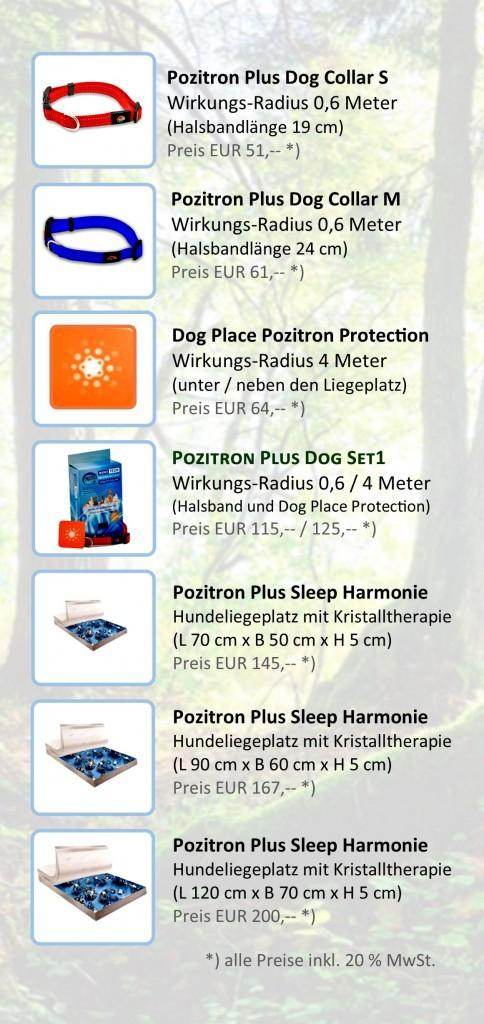 Schutz für deinen Hund